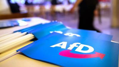 Fähnchen mit dem Logo der AfD liegen beim Landesparteitag der AfD auf einem Tisch.