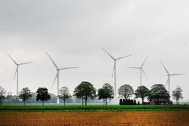 Windkraftanlagen hinter Feldern.
