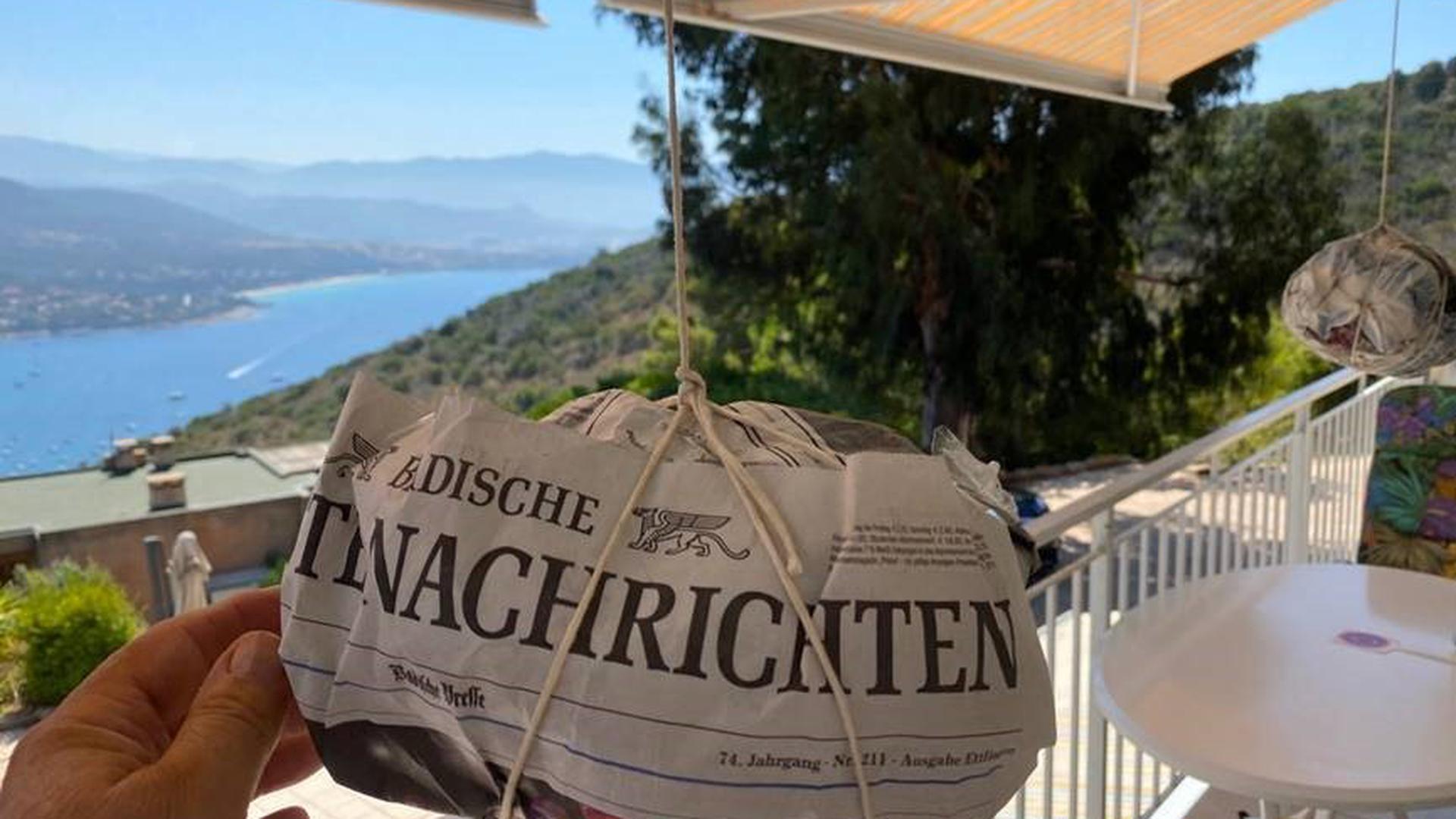 BNN auf einer Terrasse in Korsika.