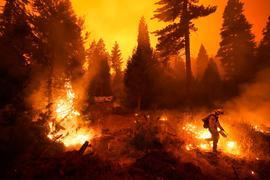 Ein Feuerwehrmann ist bei einem Waldbrand im Einsatz. Rasch um sich greifende Waldbrände haben Teile Kaliforniens in eine Feuerhölle verwandelt.