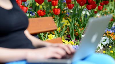 Eine junge Frau sitzt mit ihrem Notebook auf einer Parkbank. Mädchen und junge Frauen erleben laut einer Umfrage online mehr Belästigung als auf der Straße.