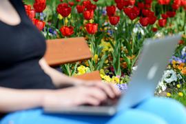 Mädchen und junge Frauen erleben laut einer Umfrage online mehr Belästigung als auf der Straße.