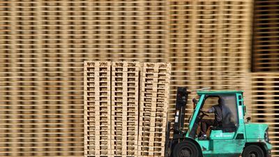 Ein Mitarbeiter fährt mit einem Gabelstapler an neuen Holzpaletten vorbei.