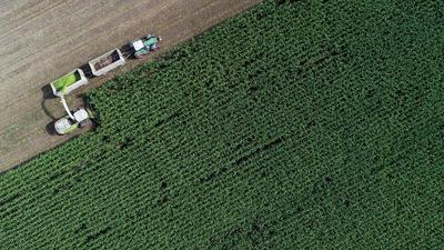 Das Urteil der Umweltverbände auf den EU-Kompromiss zur Agrarreform fällt unisono vernichtend aus.