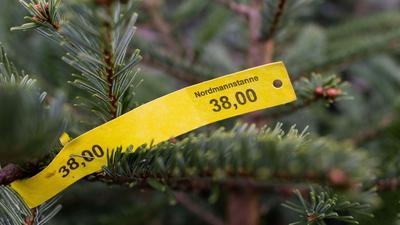 Ein Preisschild in Höhe von 38,00 Euro hängt an einer Nordmanntanne. Der Bundesverband der Weihnachtsbaumerzeuger erwartet auch 2020 ein traditionelles Verhalten beim Tannenbaumkauf.