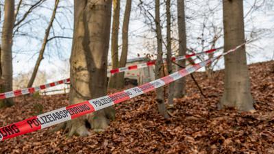 In diesem Wald bei Seevetal in Niedersachsen sind in einem Erddepot möglicherweise Hinterlassenschaften der linksterroristischen RAF gefunden worden.