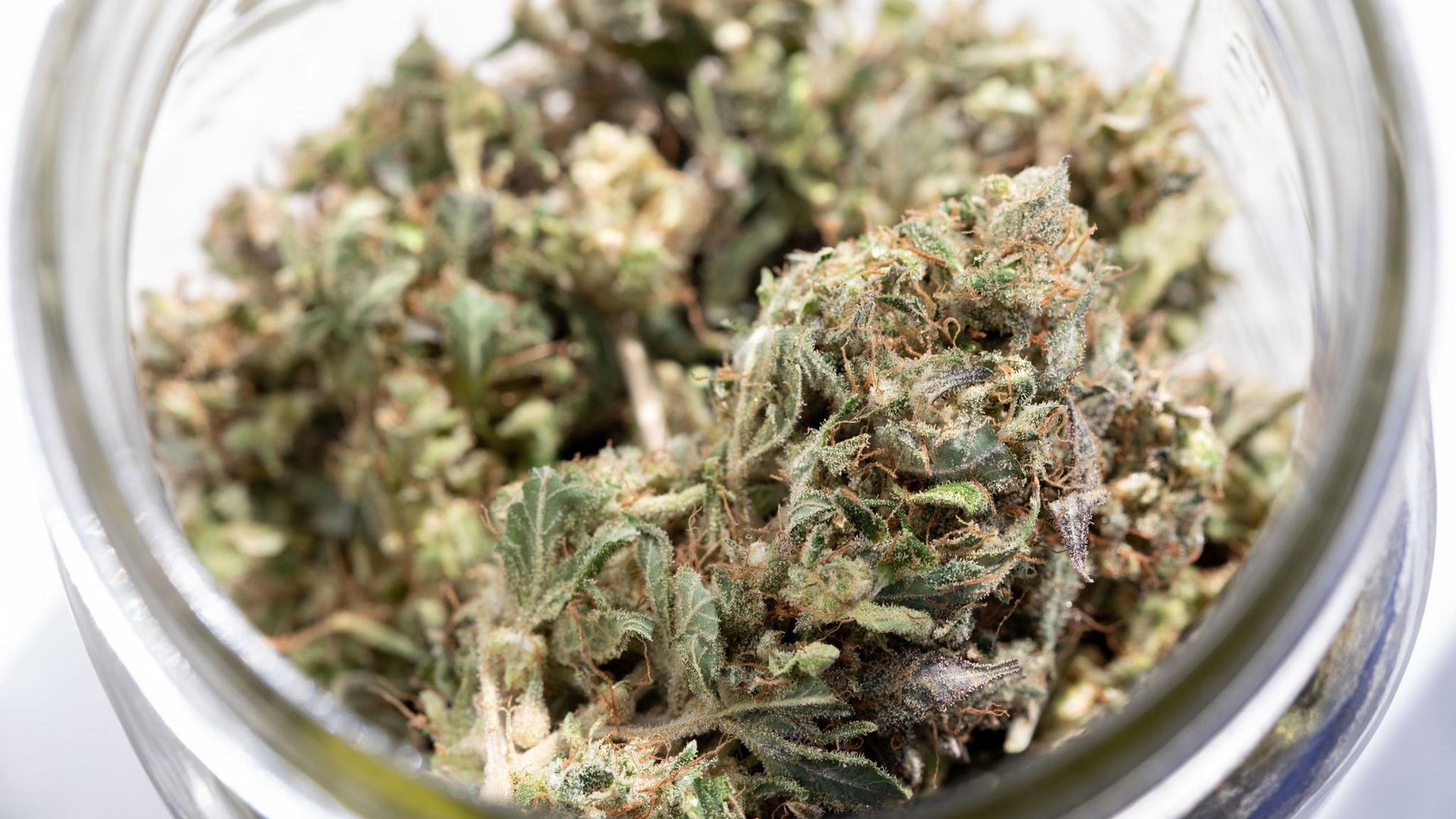 New York mit seinen knapp 20 Millionen Einwohnern - und der gleichnamigen Millionenmetropole - ist der 15. US-Bundesstaat, der Marihuana für den freien Gebrauch erlaubt.