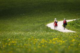 Wanderer auf einem Weg durch eine Wiese zwischen Seefeld und Mösern in Österreich.
