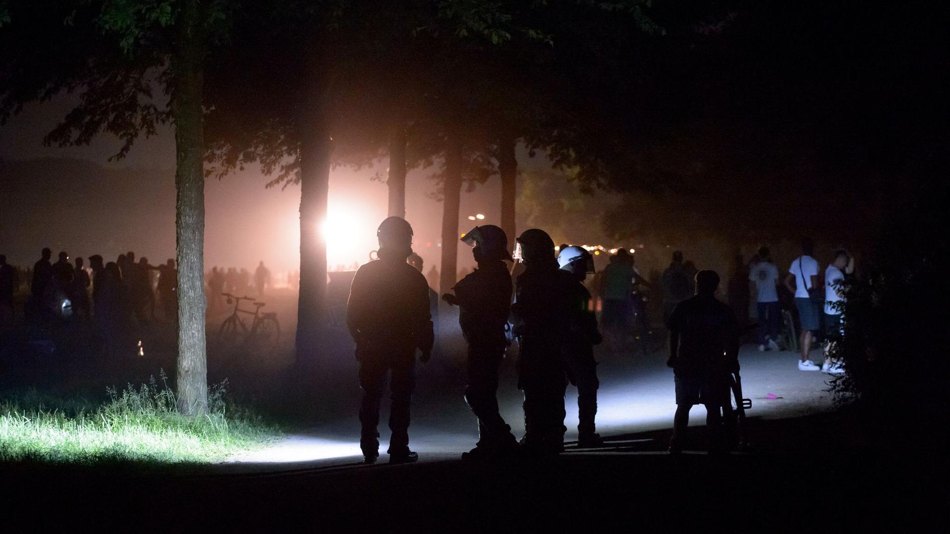 Die Polizei hat im Hamburger Stadtpark eine Party mit rund 3000 Menschen aufgelöst.