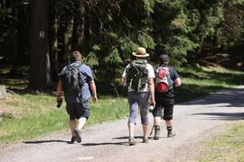 200.000 Kilometer an Wanderwegen stehen in Deutschland zur Verfügung.