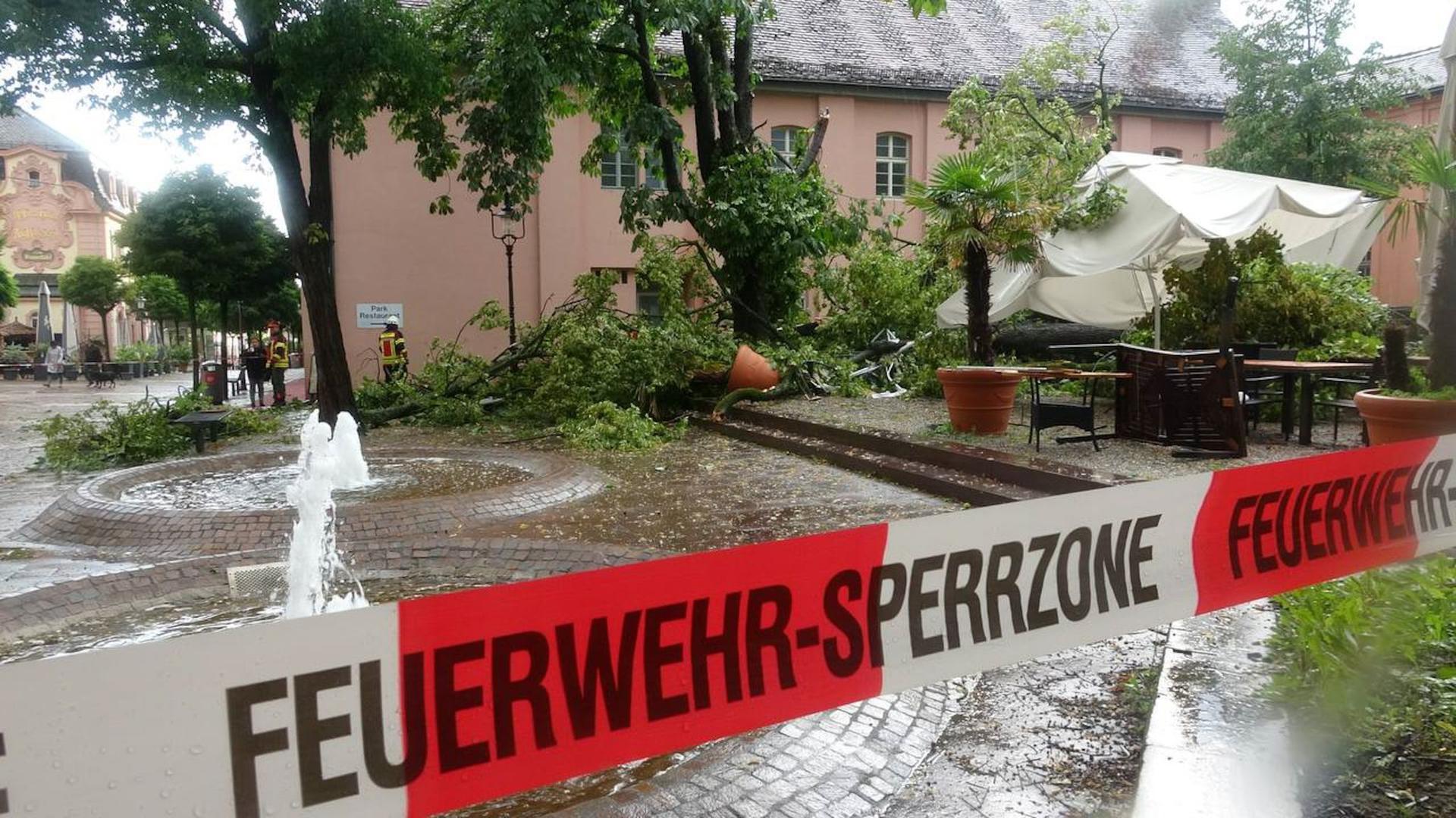 Am Schlossplatz in Rastatt liegt ein großer Baum auf den Tischen eines Restaurants.