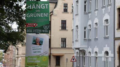Eines der nun verbotenen Wahlplakate gegen die Grünen in Zwickau.
