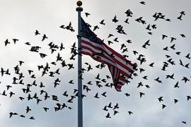 Eine US-Delegation will sich in Doha mit hochrangigen Vertretern der Taliban treffen.