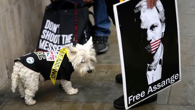 Eine Protestteilnehmerin hält während der Demonstration vor dem Gericht in London ein Plakat, auf dem Julian Assange abgebildet ist.