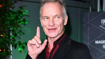 Der britische Musiker Sting.