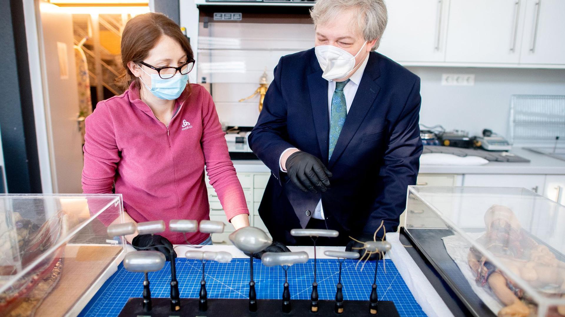 Restauratorin Teodora Szanto und Kurator Oliver Gauert im Roemer- und Pelizaeus-Museum vor einem historischen Modell, das Krankheitserreger zeigt.