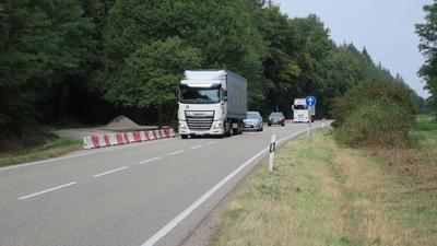 Tausende Laster fahren täglich über die B9 zwischen Kandel und Frankreich.