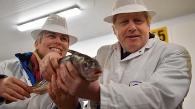 Kampfansage an die EU: Britischer Premier Boris Johnson posiert auf einem Markt in der nordenglischen Hafenstadt Grimsby mit einem Fisch, um die Bedeutung der Fischerei für sein Land zu unterstreichen.