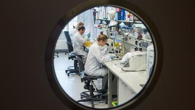 Forscher arbeiten im Universitätsklinikum Hamburg Eppendorf (UKE) in einem molekularbiologischen Forschungslabor. Wissenschaftler am UKE wollen über eine detaillierte Analyse des Erbguts mehr über die Ursachen von Herz-Kreislauf-Erkrankungen erfahren. +++ dpa-Bildfunk +++