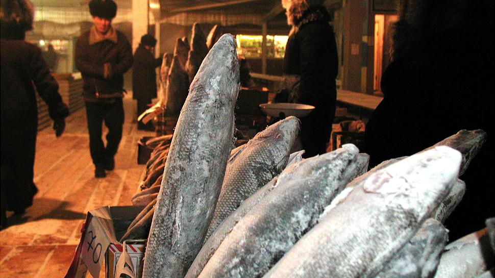 Keine Extra-Kühlung nötig: Auf dem Markt in der sibirischen Stadt Jakutsk wird bei knapp Minus 50 Grad gefrorener Fisch verkauft, der als Delikatesse gilt.