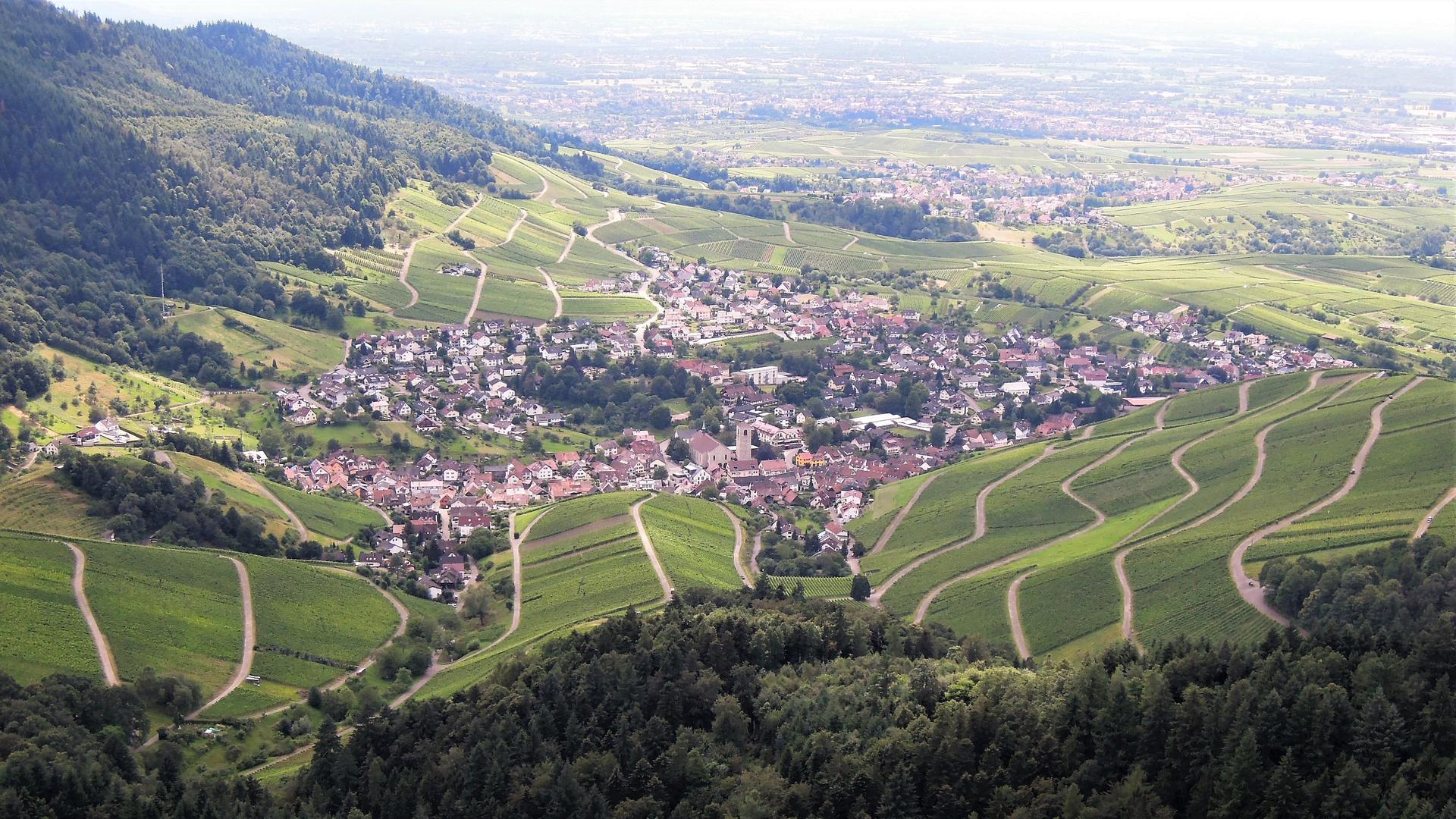 Zersiedelte Landschaft: Neubaugebiete mit Einfamilienhäusern dehnen sich seit Jahrzehnten um die historischen Ortskerne aus und beanspruchen immer mehr Naturraum. Das Foto zeigt das Baden-Badener Rebland mit Neuweier im Vordergrund.