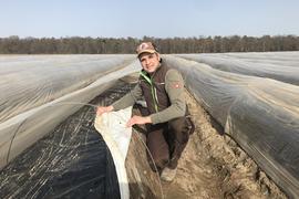 Spargelbauern aus Leidenschaft: Familie Großhans bewirtschaftet in der Region mehrere Felder. Spargel aus Waghäusel soll in Kürze auf den Markt kommen. Länger dauert es bei dem Gemüse aus  in Hockenheim. Dort entstand das Foto mit Steffen Großhans.