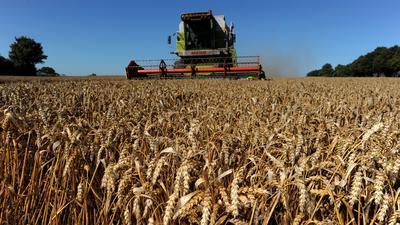 Vor allem bei den Umweltvorgaben der Agrarreform gibt es Differenzen.