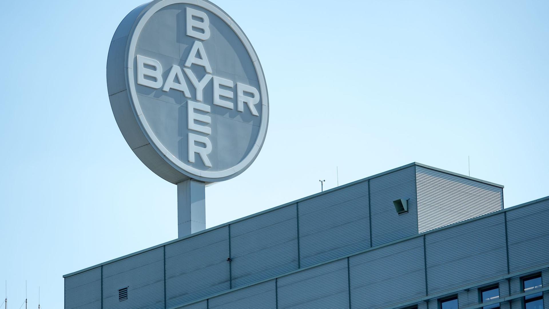 Gen- und Zelltherapien sollen das Wachstum des Bayer-Konzerns ankurbeln.