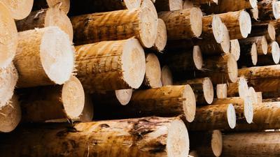 Industrielle Vorprodukte wie Holz, Stahl oder Plastik sind knapp - das setzt Industrie und Handwerk unter Druck.