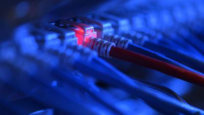 Ein Netzwerk-Kabelstecker in der Netzwerkzentrale einer Firma.