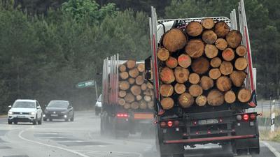 Um Engpässen und massiven Preissteigerungen bei Bauholz in Deutschland entgegenzuwirken, werden vorübergehende Exportbeschränkungen gefordert.