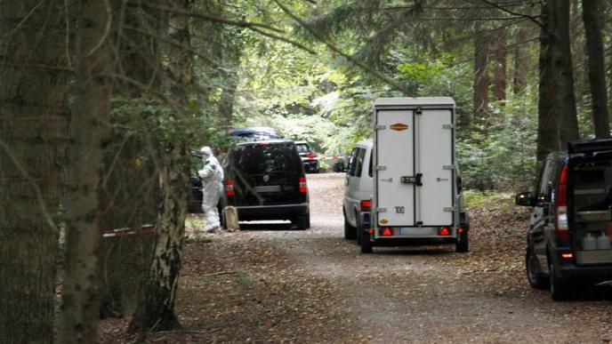 Leiche in Wald bei Pforzheim entdeckt