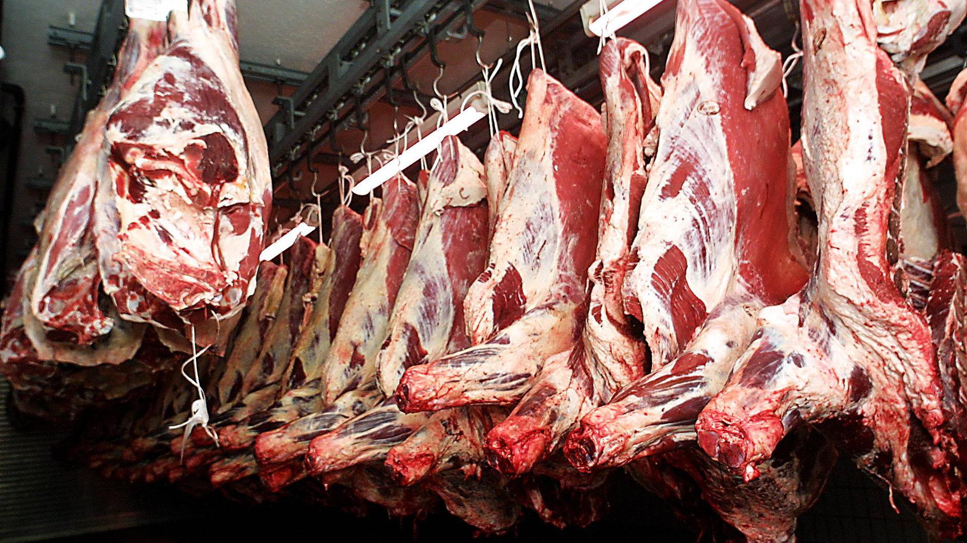 Rindfleisch am Haken: Bei Müller-Fleisch ist die Rinderschlachtung am Hauptsitz in Birkenfeld konzentriert.