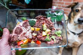 Zum Themendienst-Bericht vom 22. Mai 2019: Futter nach der Barf-Methode besteht aus rohem Fleisch, Innereien, Knorpelfleisch, Knochen sowie Obst und Gemüse.