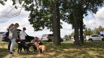Olesja, Emilia, Christoph und Andrej mit ihren Hunden Hanni und Fine. Tiere wie Menschen genießen das schattige Plätzchen abseits der A8 und des Parkplatzes der Raststätte Pforzheim-Nord.