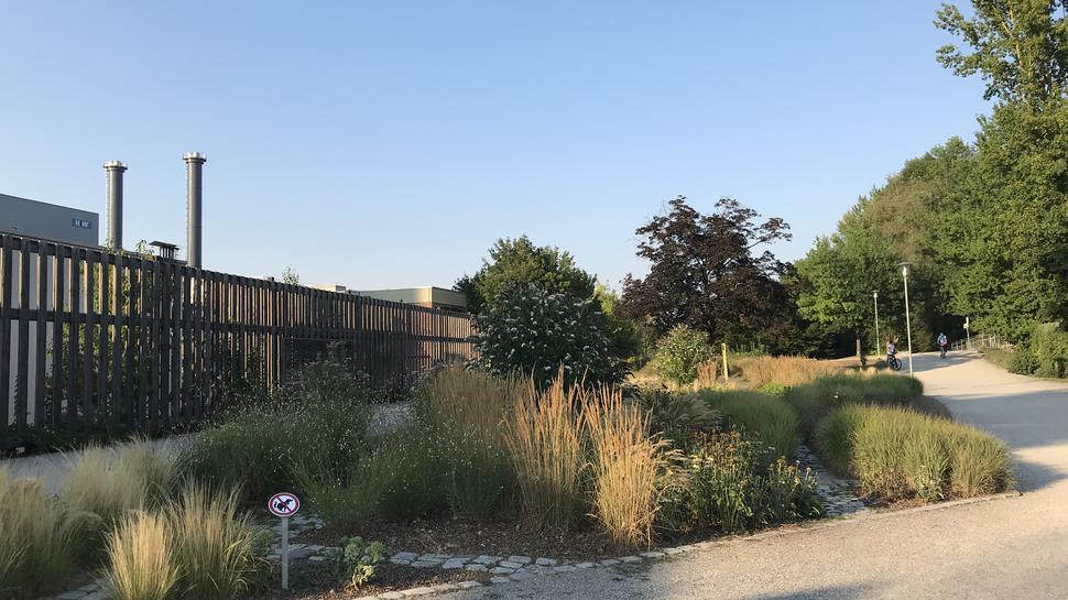 Heizkraftwerk im Hintergrund des Enzauenparks