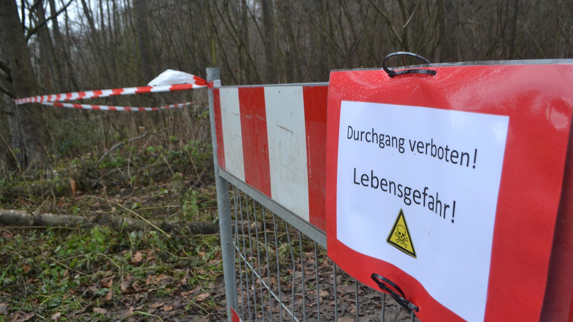 """Absperrband im Wald, Aufschrift: """"Durchgang verboten! Lebensgefahr!"""""""