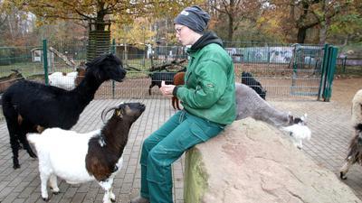 Tiere mit Tierpflegerin
