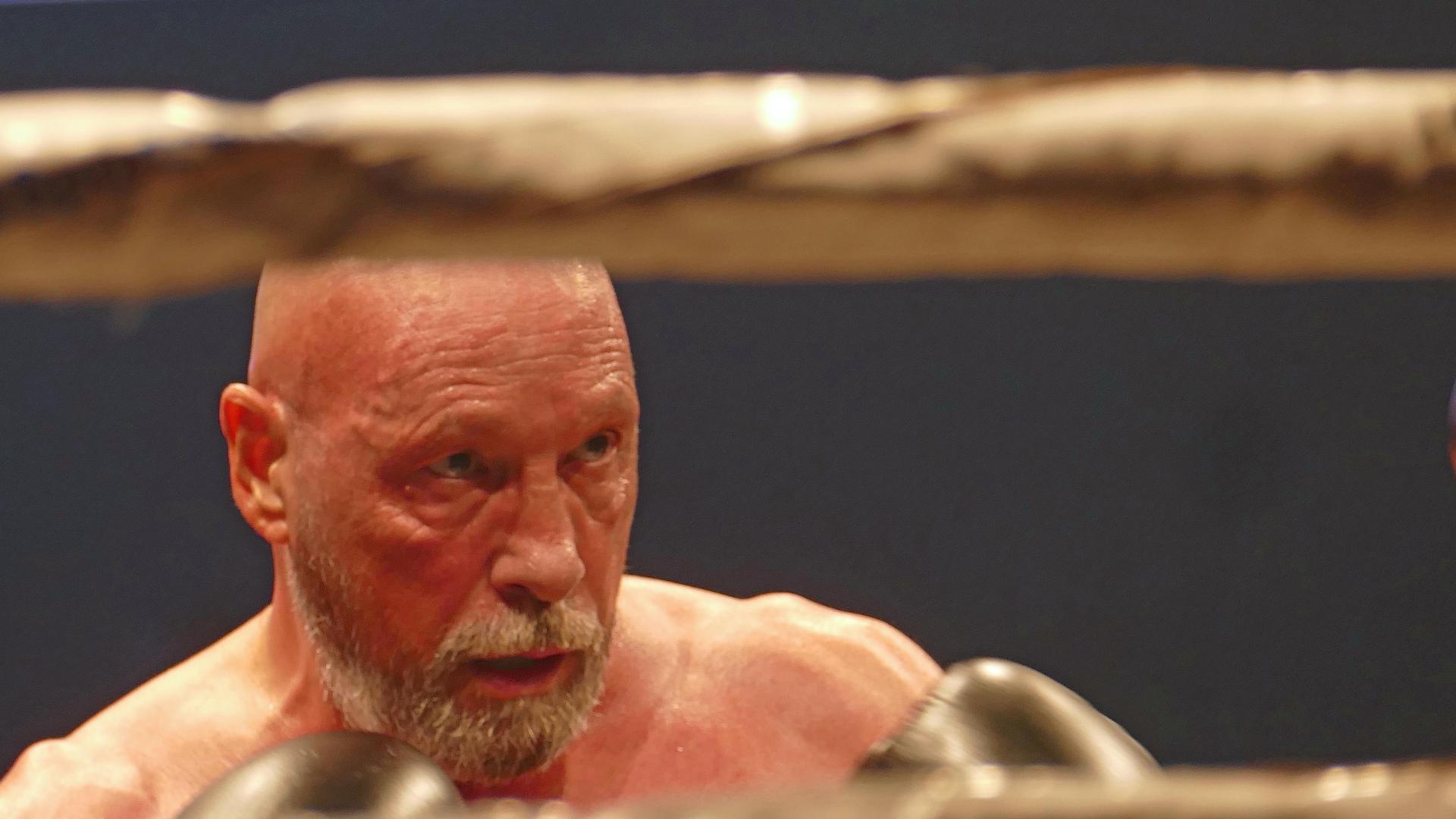 Boxkampf Abraham 2019