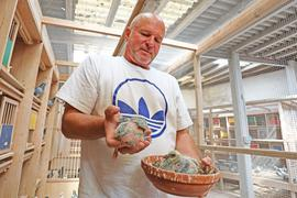 Taubenzüchter Andreas Drapa mit Nachwuchs