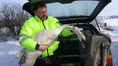 Ein Herz für verletzte und kranke Tiere: Uwe Lässig, Gründer des Tierrettungsdienstes UNA, hat auf seinen unzähligen Einsätzen in den vergangenen 14 Jahren schon einiges erlebt.