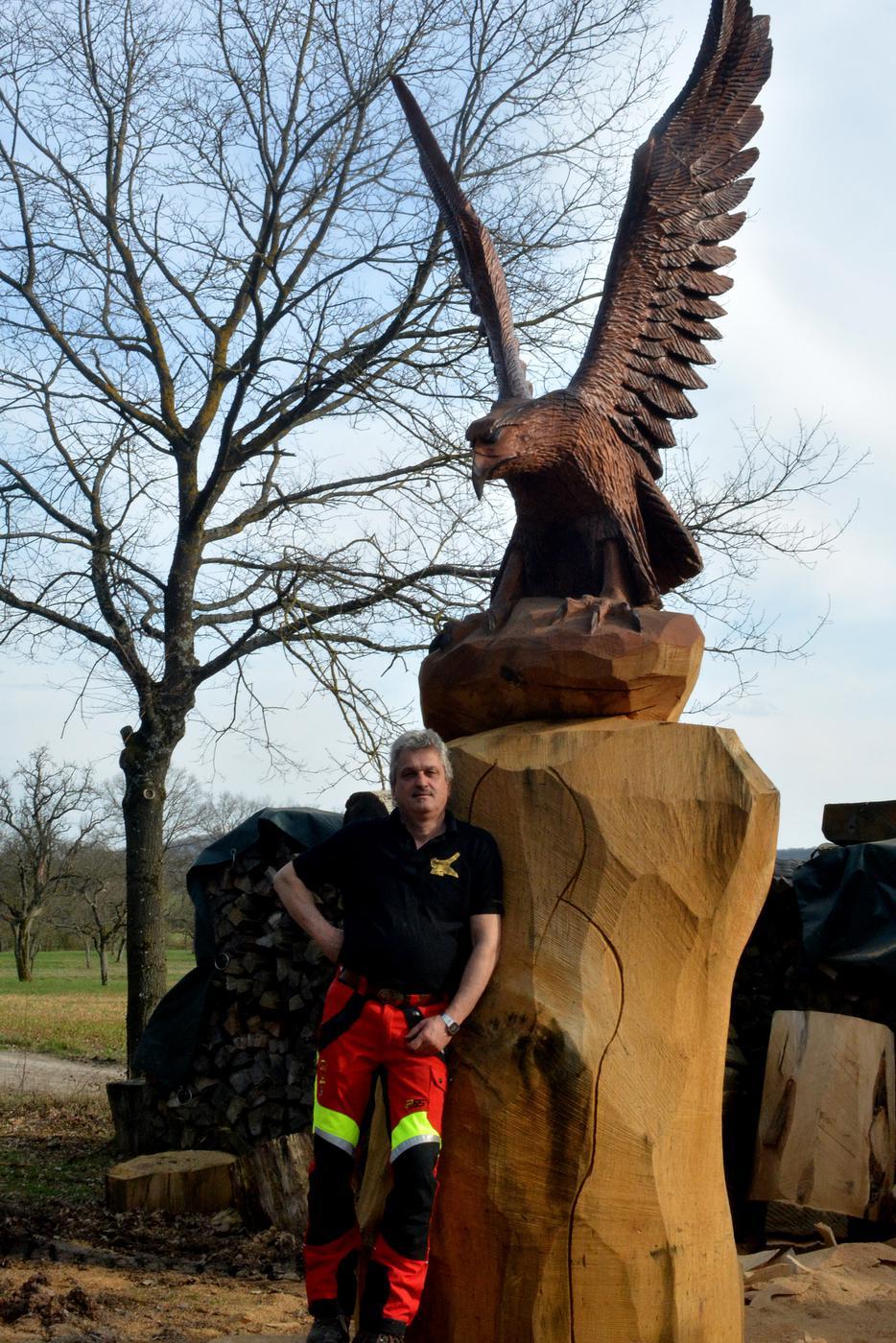 Derzeit arbeitet Dieter Binder an einer fünf Meter hohen Eiche, die über 300 Jahre alte ist.