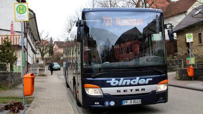 Buslinie 733, fährt von Pforzheim nach Bretten