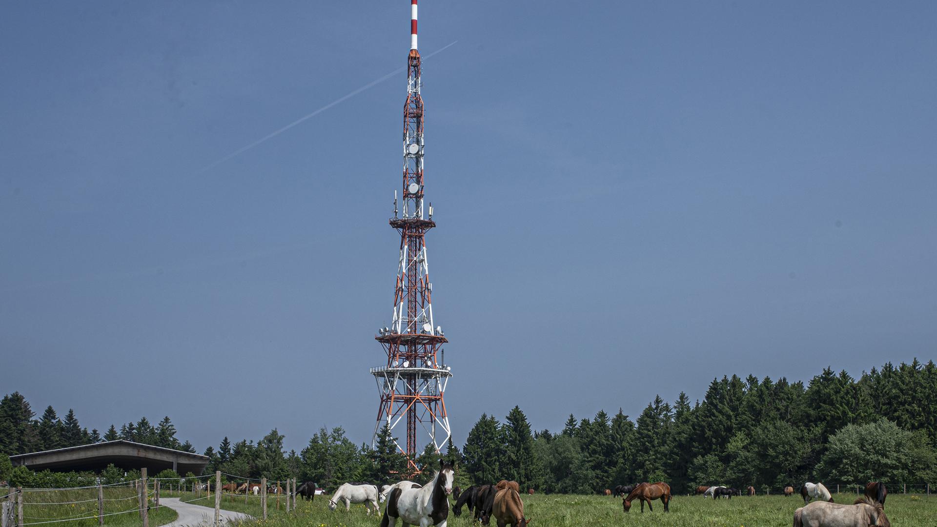 Der Funkturm in Langenbrand