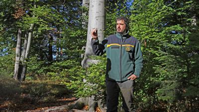 Förster Fabian Kuhr erläutert die Zukunftsperspektiven des Waldes.