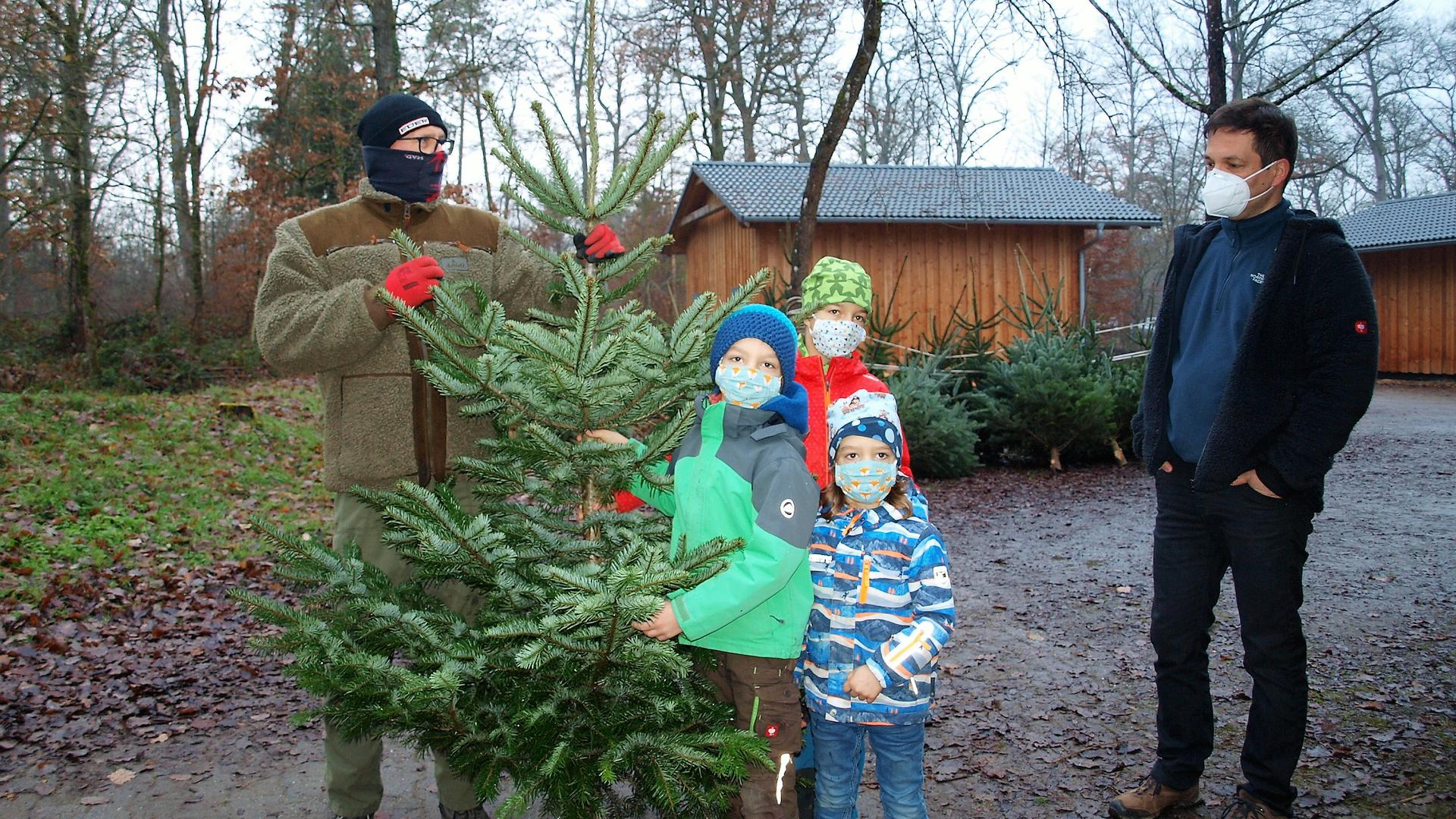 """""""Unser Baum ist der schönste"""" sind sich Paul, Klara und Felix einig. Papa Björn Sämann (rechts) stimmt der Wahl zu"""