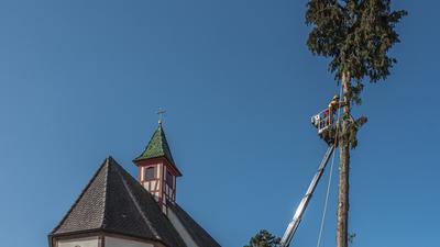Die hohe Thuja neben der Sankt Sebastianskirche in Neuhausen wurde gefällt.