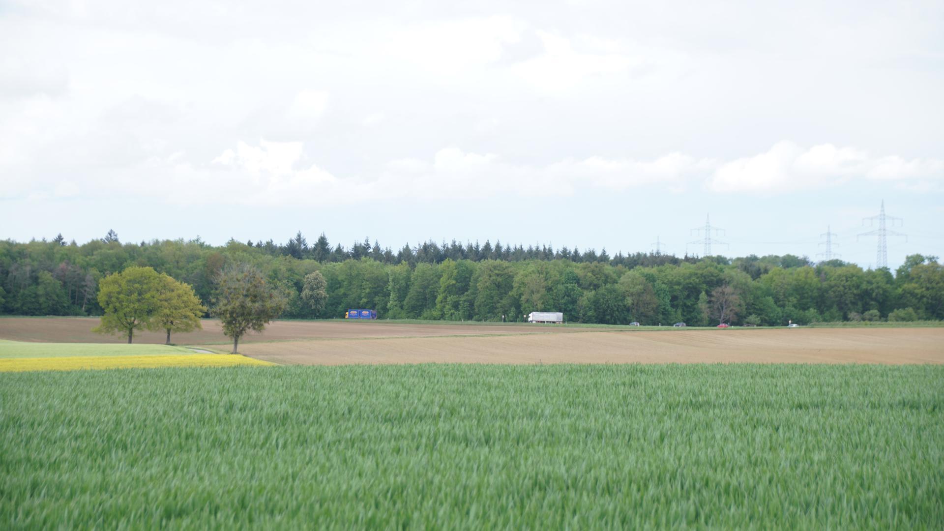 Begehrter Standort: In den Distrikten Hinterbach (links der Bundesstraße) und Altenhau (rechts) können sich nun gleich zwei Investoren grundsätzlich vorstellen, Windkraftanlagen zu errichten.