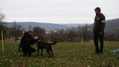 Momentan sind auf dem Hundesportplatz in Niefern nur Einzeltrainings möglich, wie hier mit Katja Wethlow, ihrem Hund Paul und Trainer Udo Walter.
