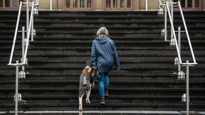 Kerstin Claus geht mit Pudelmischling «Lappes» am 09.11.2016 in Mainz (Rheinland-Pfalz) auf dem Uni Campus eine Treppe hoch. Kerstin Claus wurde als Teenager sexuell missbraucht. «Lappes» ist ein Assistenzhund, der ihr hilft ihre psychisches Probleme zu bewältigen. (zu dpa «Mit dem Hund zur Uni - Hilfe aus dem Fonds sexueller Missbrauch» vom 18.11.2016) ++ +++ dpa-Bildfunk +++